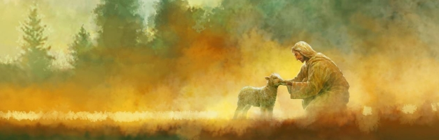 0053406_the-lost-sheep