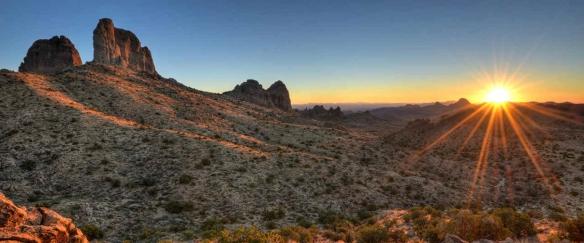 desert-wilderness-1240x620